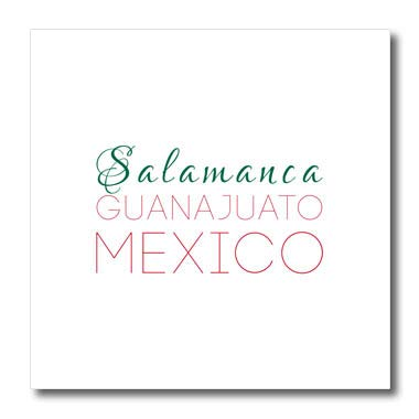 3dRose Alexis Design - Mexican Cities - Salamanca, Guanajuato, National Color Patriot Mexico Home Town Design - 10x10 Iron on Heat Transfer for White Material (ht_311580_3)
