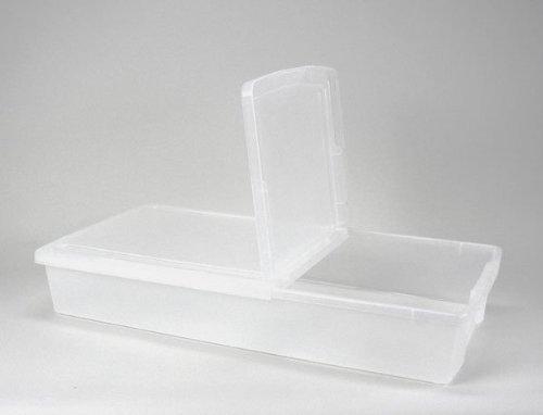 (IRIS Underbed Storage Box with Hinged Lid, Set of 2)