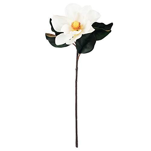 Vickerman FA172401 Everyday Magnolia Stem (Flower Magnolia)