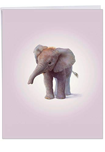 k You Card: Zoo Babies-Elephant Featuring Sweet and Adorable Baby Zoo Animals, With Envelope (Giant Size: 8.5