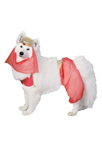 Harem Dog Pet Costume - Large - Pet Costumes ()