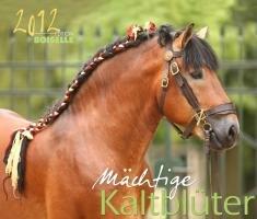 Mächtiges Kaltblut 2012: Mächtige Pferde