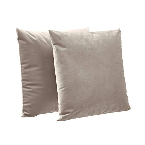 AmazonBasics 2-Pack Velvet Fleece Decorative Throw Pillows - 18
