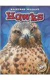 Hawks, Kari Schuetz, 1626170584
