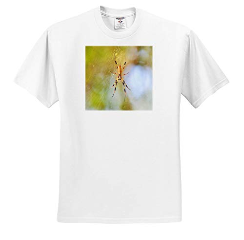 3dRose Dreamscapes by Leslie - Arachnids - Golden Silk orb Weaver Spider in Florida - T-Shirts - Toddler T-Shirt (2T) (ts_292254_15)