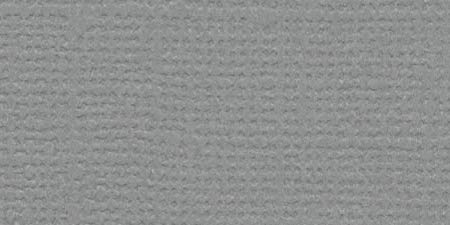 Basic Grey 12x12 Paper Cardstock - Bazzill Basics Paper 303393 Cardstock Solid Gray Ash 12X12 80Lb Mono by Bazzill,