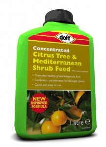 NEW CONCENTRATED BOTTLES CITRUS TREE AND MEDITERRANEAN SHRUB FEED 1 LITRE BOTTLE Doff