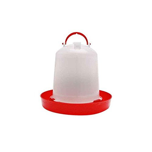 Chilie Chicken Drinker Feeder Poultry Chick Hen Quail Bantam Food Water Farm Animal Feeding Watering Supplies