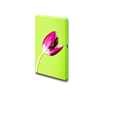 Canvas Prints Wall Art - Pink Tulip Flower on Green Background | Modern Wall Decor/Home Art Stretched Gallery Canvas Wraps Giclee Print & Ready to Hang - 36