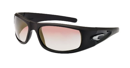 Carrera Jamaika Sunglasses (Brown Matte/Copper - Carerra Glasses