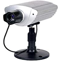 Digital Peripheral Solutions QSIPUF2 Q-See Internet Camera with Built-in Web Server
