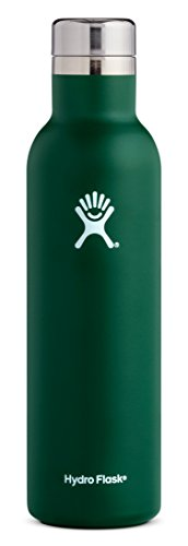 Hydro Flask 25 oz Double Wall Vacuum Insulated Stainless Steel Leak Proof Wine Bottle with BPA Free Cap, Sage