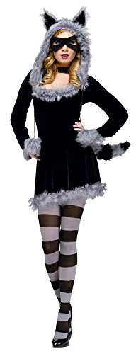 Fun World Women's Racy Raccoon Costume, Black, Medium/Large