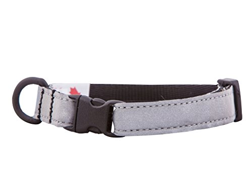 RC Pet Products 1/2-Inch Wide Kitty Breakaway Reflective Cat Collar, 8 to 10-Inch