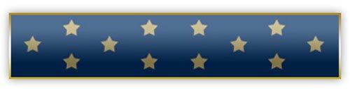 Award Bar (Blue Medal of Honor Award Bar)