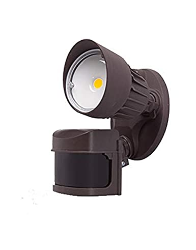 LED Outdoor Security Flood Light with Motion Sensor, 10W