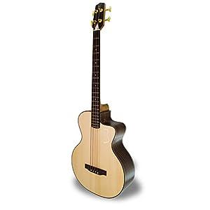 APC Instruments BG300 PSI MX CW Bass Gitarre