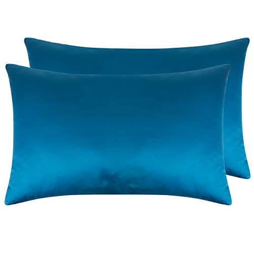 NTBAY Zippered Satin Pillowcases, Super Soft and Luxury Queen Pillow Cases Set of 2, Royal Blue