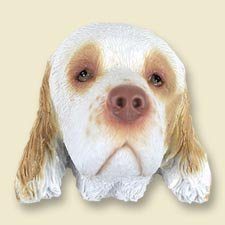 Conversation Concepts Clumber Spaniel Magnet (Set of 6)