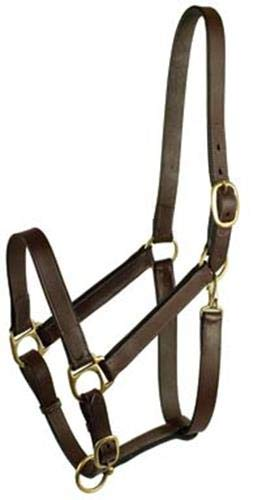 - GATSBY LEATHER COMPANY 282987 Stable Halter with Snap Havanna Brown, Horse
