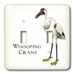 3dRose lsp_51601_2 Whooping Crane Shorebird Double Toggle (Crane Switchplate)