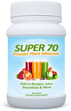 Super 70 All Natural Plant Based Powder Superfood - Powerful Antioxidants & Digestive Enzyme Function by Magzuma, 36 Grams ()