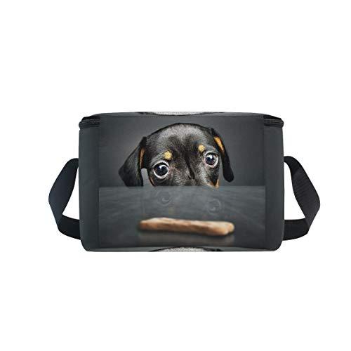 nique Puppy lunch Hipster Boîte recherche Dachshund à à Cute déjeuner refroidisseur pour Bandoulière pique Sac 7vFX6q7