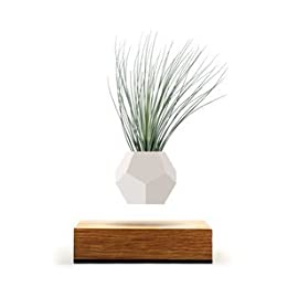 Floating Levitating Plant Pot for Air Plants