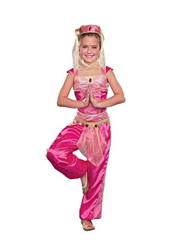 I Dream of Genie Aladdin Belly Dancer Girls Costume