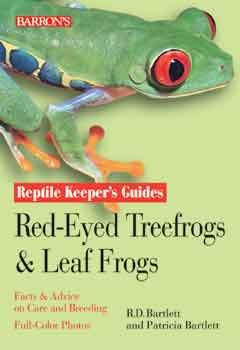 Guide To Red - eyed Treefrogs & Leaf Frogs