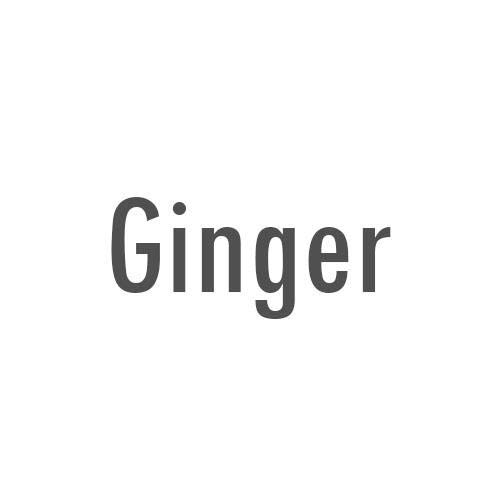 Artizen Ginger Essential Oil  Therapeutic Grade - Huge 4oz B