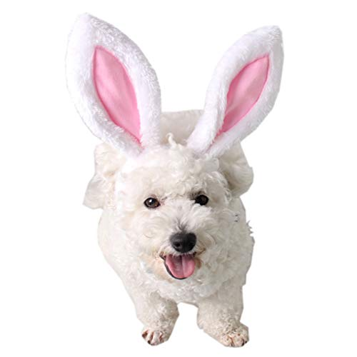 Alfie Pet - Jelica Rabbit Hat for Party Halloween Special Events Costume (for Small Dogs & Cats) - Size: Small -