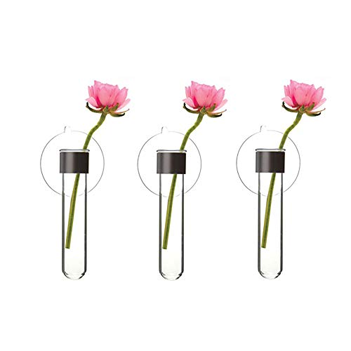 (Chive - Suction Glass Flower Bud vase, Mirror Or Glass Set of 3 (Test Tube Base Clear))