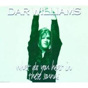 Dar Williams - What Do You Hear in These Sounds - Amazon