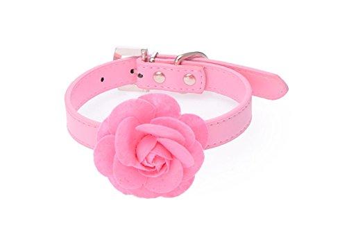 dog rose flower leather collar