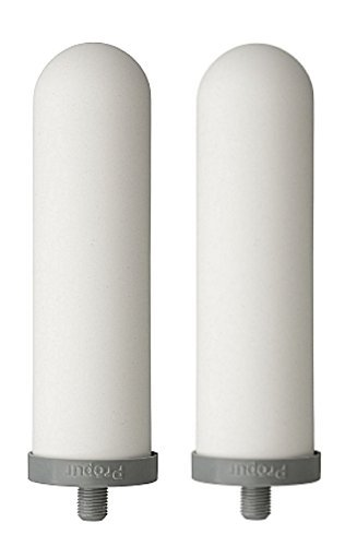 Propur ProOne 9-inch Slimline Replacement Filters for Propur Prepper King Countertop Gravity Water Filter System - Removes Fluoride, Lead, Chlorine, Microplastics, and More - 1 Pair