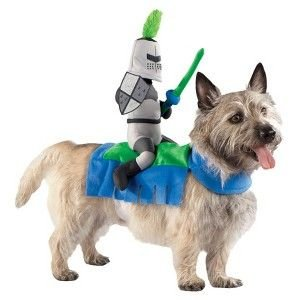Target Pet Costume - Jouster (BLUE/GREEN, SMALL)