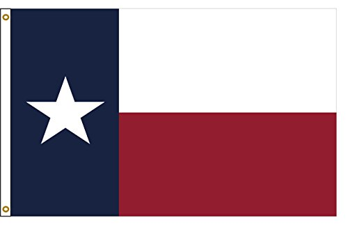 (Texas 8ftx12ft Polyester State Flag 8x12 Made In USA 8'x12')