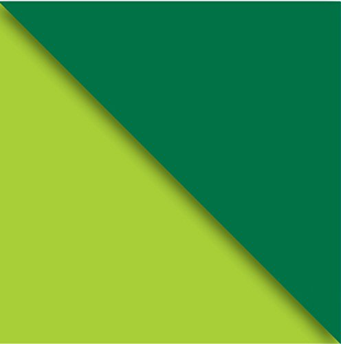 Price comparison product image Jillson Roberts 6-Roll Count Double-Sided Gift Wrap Available in 12 Color Combos, Lime Green/Hunter Green Kraft