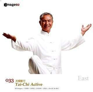 Amazon East Vol33 太極拳 Tai Chi Active イラスト素材 ソフトウェア