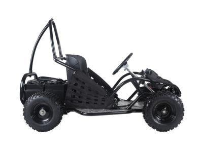 TAO Taotao EK80 - Fully Electric Buggy