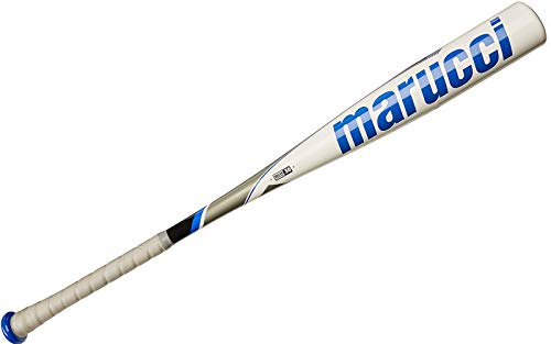 Top 10 Bbcor Bats of 2019 - Best Reviews Guide