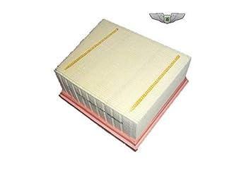 Genuine Ford  EcoSport Air Filter 1803059
