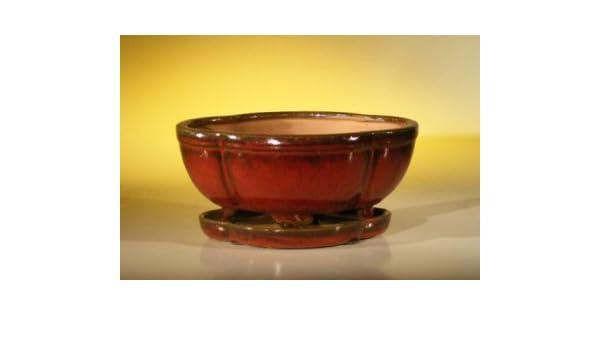 Parisian Red Ceramic Bonsai Pot Oval Professional Series 10 x 8 x 4