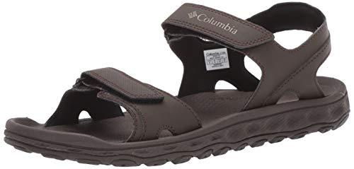 (Columbia Men's Buxton 2 Strap Sport Sandal Cordovan, Pebble 10 Regular US)