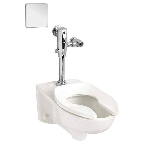 American Standard 3351.101.020 Afwall Millennium 1.1 - 1.6 gpf  Elongated Toilet Bowl Only with EverClean American Standard Afwall Wall
