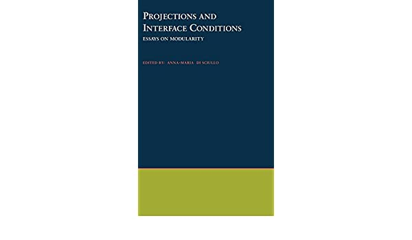 Projections and Interface Conditions: Essays on Modularity