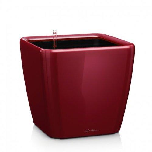 Lechuza Quadro Premium 50 LS - Komplettset Scarlet Rot