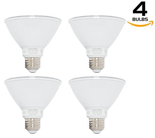 Best Led Light For Kitchen in Florida - 6