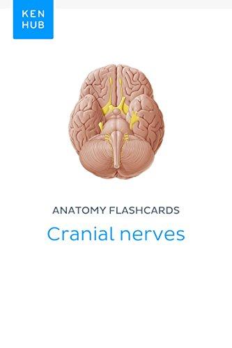 Anatomy flashcards: Cranial nerves: Learn all nerves on the go ...